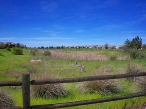Wetlands - homes behind