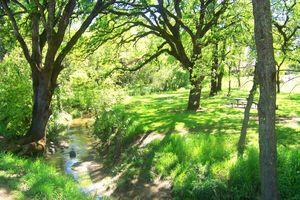 CH Rush Park stream